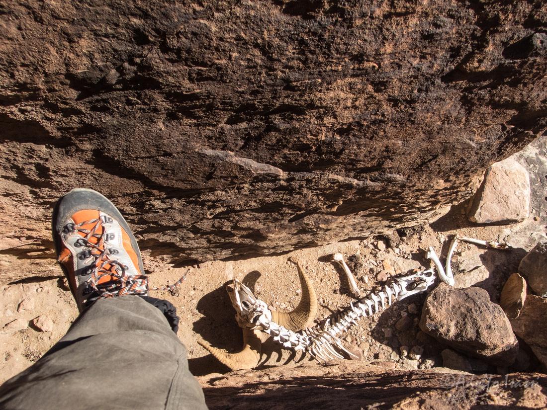 Right Canyon No 48